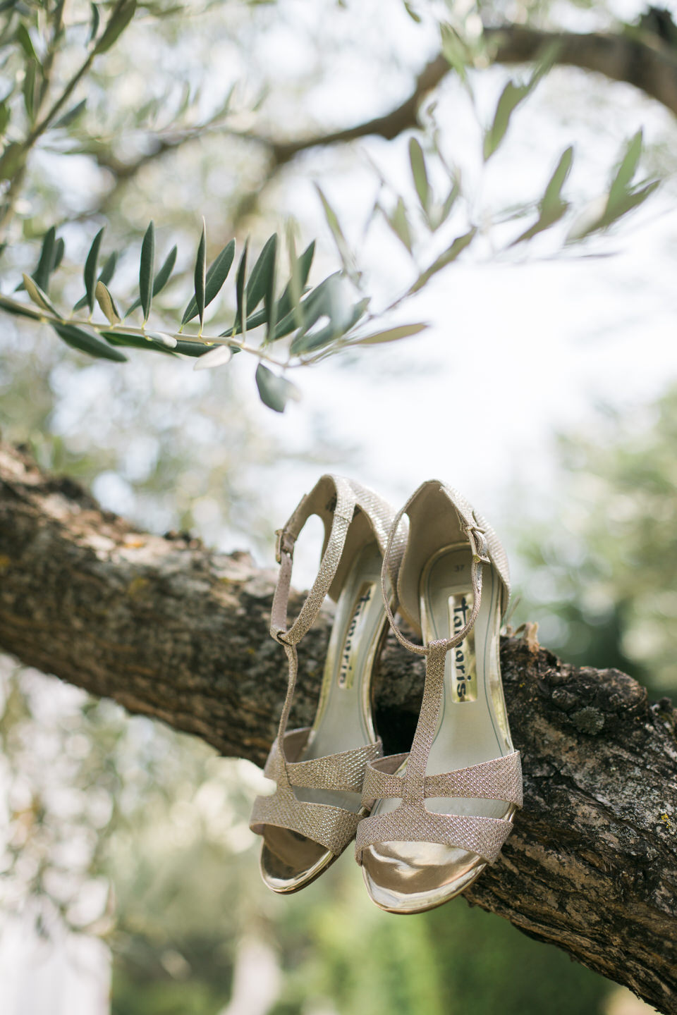 Wedding in Lefkada by Fiorello Photography